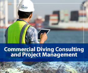 Commercial Diving Consulting and Project Management